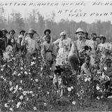 Mythe du Vieux Sud U.S
