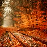 Autumn Radicals 2007 CD 1