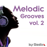 Melodic Grooves vol. 2