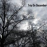 Trip On December