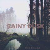 MOOD 5 - Rainy Dusk