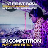 Mint Festival Competition Entry - Danny K