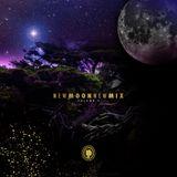 New Moon New Mix Vol. 9