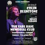 Penarth Soul Club - Colin Blunstone Support Set 7th April 2019