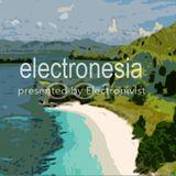 Electronesia 001 with Electronivist