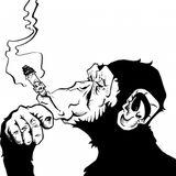 Intelligent Apes#5