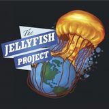 Daniel from Mindil Beach Markets on Keloha, Sunshine Coast, and the Jellyfish Project