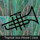 Tropical Jazz House Mix 2015
