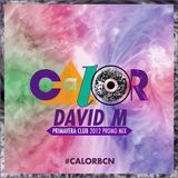 David M - C.A.L.O.R. Primavera Club Promo Mix