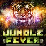 La Muzica - Jungle Fever 2012 edition