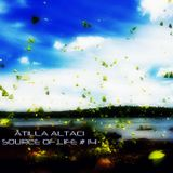 Atilla Altaci - Source of Life #14