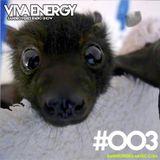 sandro-peres-viva-energy-003