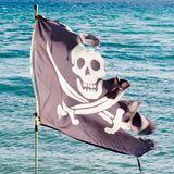 Alice - Offensiva ad Oltranza - Terza Puntata (Pirati Somali)