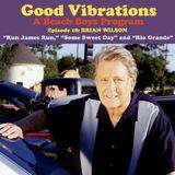 Good Vibrations: Episode 18 — Brian Wilson discusses Run James Run, Rio Grande and more!