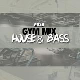 DJ PUSH -  HOUSE & BASS EDITION