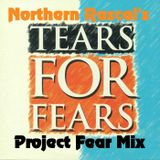 Tears For Fears - Northern Rascal Presents The Project Fear Mix