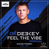 Deekey - Feel The Vibe 048 [Record VIP House] (22.02.2018)