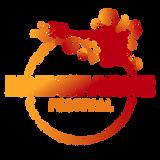 Slipmatt at Lindisfarne Festival 2017