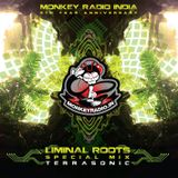 Monkey Radio India 5th anniversary - Exclusive showcase - Liminal Roots 30.10.2017