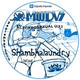 Digitally Imported Radio - MissDVS - ElectroSexual 031 (Sept 2012) Shambhalaundry 2nd Load