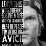 Avicii - The Tribute Mix