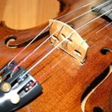 THE ESSENCE OF THE VIOLIN