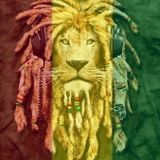 Ras To The Bone - Bush Doctor - Roots Selection