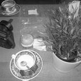 Theekransje - Jergan Callebaut (Vuurwerk, Glints, Run Tell Secrecy)