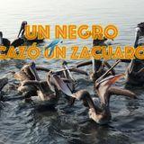 No 4 UN NEGRO CAZÓ UN ZACUARO / RADIO MIXANTEÑA