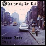 Soul Cool Records - Vinnie Bass & Greg L Blaxploitation Guest Mix