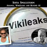 Sofia Smallstorm - Assange, WikiLeaks and Beyond AI