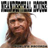 Neanderthal House