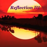 Reflection 3