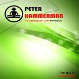 Peter Hammerman - The Mix V (Spring Session)