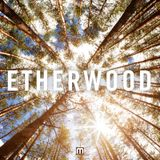 Etherwood - Album Mini Mix