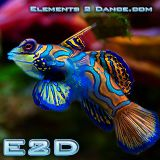 E2D-039 feat. Soundtribe Records and Jokton