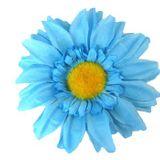 26-06-17 The Blue Sunflower Show