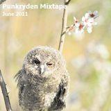 Punkryden Mixtape : June 2011