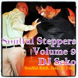 Soulful Steppers #9 (A mix for Lani) - DJ Seko