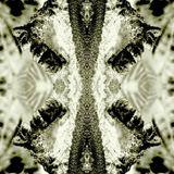 Stinky Grooves 01.11.16 - Very strange feeling.....
