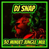 30 minute  jungle  mix  dj snap