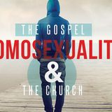 The Gospel, Homosexuality and the Church: God's Big Story