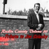 ROCKIN COUNTRY VOL 30 - TRIBUTE TO JIM SOLECKY