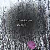 Collective Joy #3_2013
