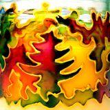 """ colorful year "" mix olivier 28décembre2015"
