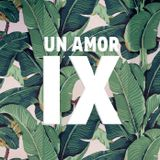 The FunkFreakerz -  Un Amor IX: La Nouvel Amor