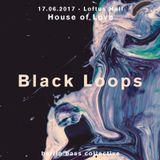 Black Loops live at House of Love (17.06.17) @ Loftus Hall Berlin