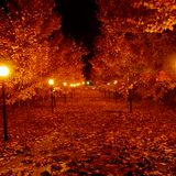 DJ Paul Rodhy - The Autumn Mix 2001 (Music 4 the Falling Leafs)