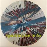 Apadrina un Indie @ (P8-T2)
