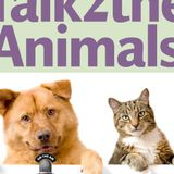 Meet Animal Advocate and Voice of the Animals Julie Lines
